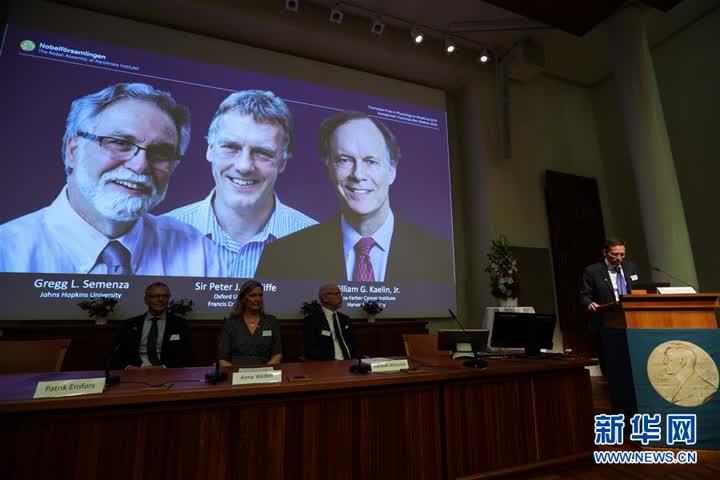 (国际)(5)三名科学家分享2019年诺贝尔生理学或医学奖